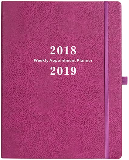 amazon com planner 2018 2019 weekly appointment book with julian