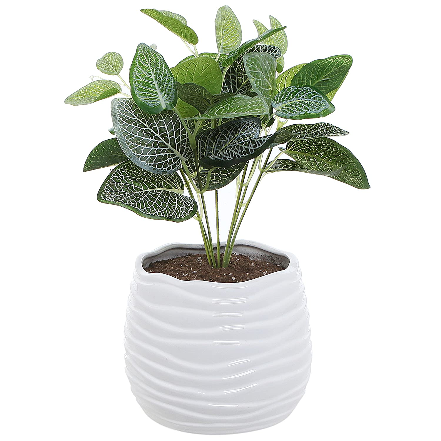 5.5 Inch White Ceramic Wavy Design Plant Flower Planter Container Pot / Decorative Centerpiece Bowl Vase