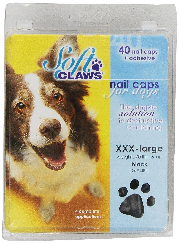 Dog nail caps hardwood floors gurus floor for Hardwood floors dog nails