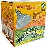 Lucky Reptile Bright Sun UV Desert, Metalldampflampe für E27 Fassung mit UVA und UVB Strahlung