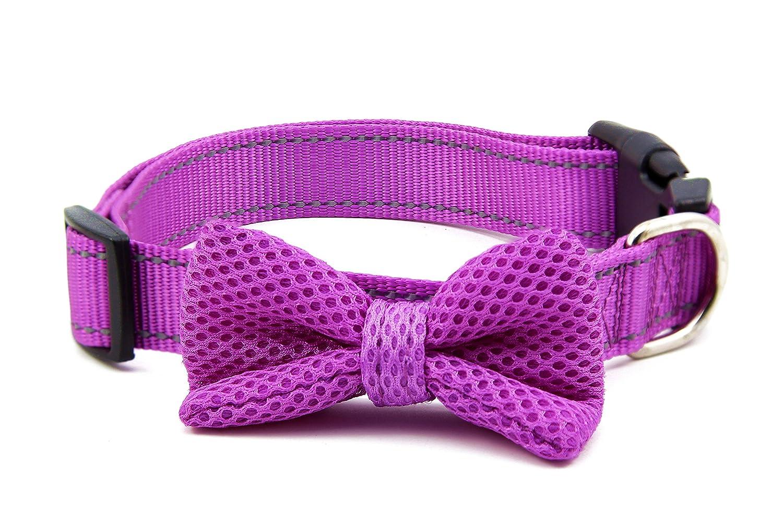 Purple L Purple L BIG SMILE PAW Nylon Dog Collar with Bow Tie,Reflective Dog Collar,Adjustable Dog Collar (L, Purple)