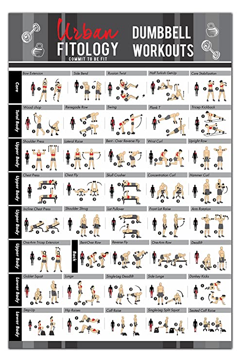 Urban FitologyTM Dumbbell Exercise Workout Poster For Men And Women