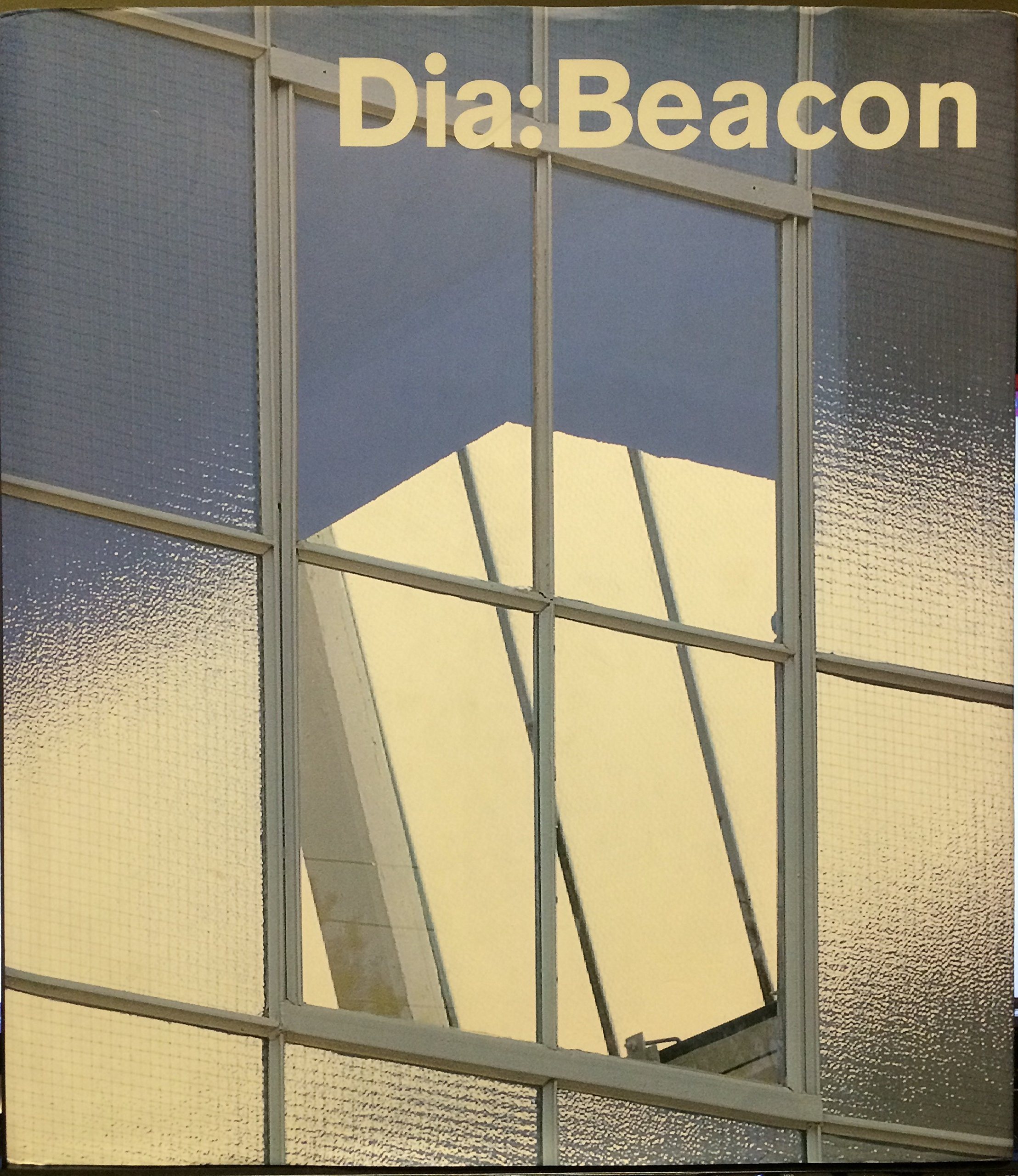 Dia, the Collection in Beacon: Amazon co uk: Lynne Cooke, Michael