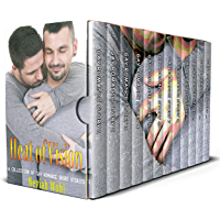 Heat of Vision: A Collection of Gay Romance Short Stories (English Edition)