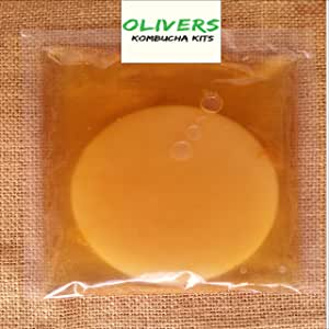 Kombucha Scoby with 200ml of Starter Liquid and Instructions, Free Postage.