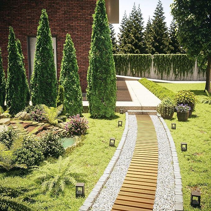 Floranica® Camino de jardín Enrollable (por Metro), Pasarela ...