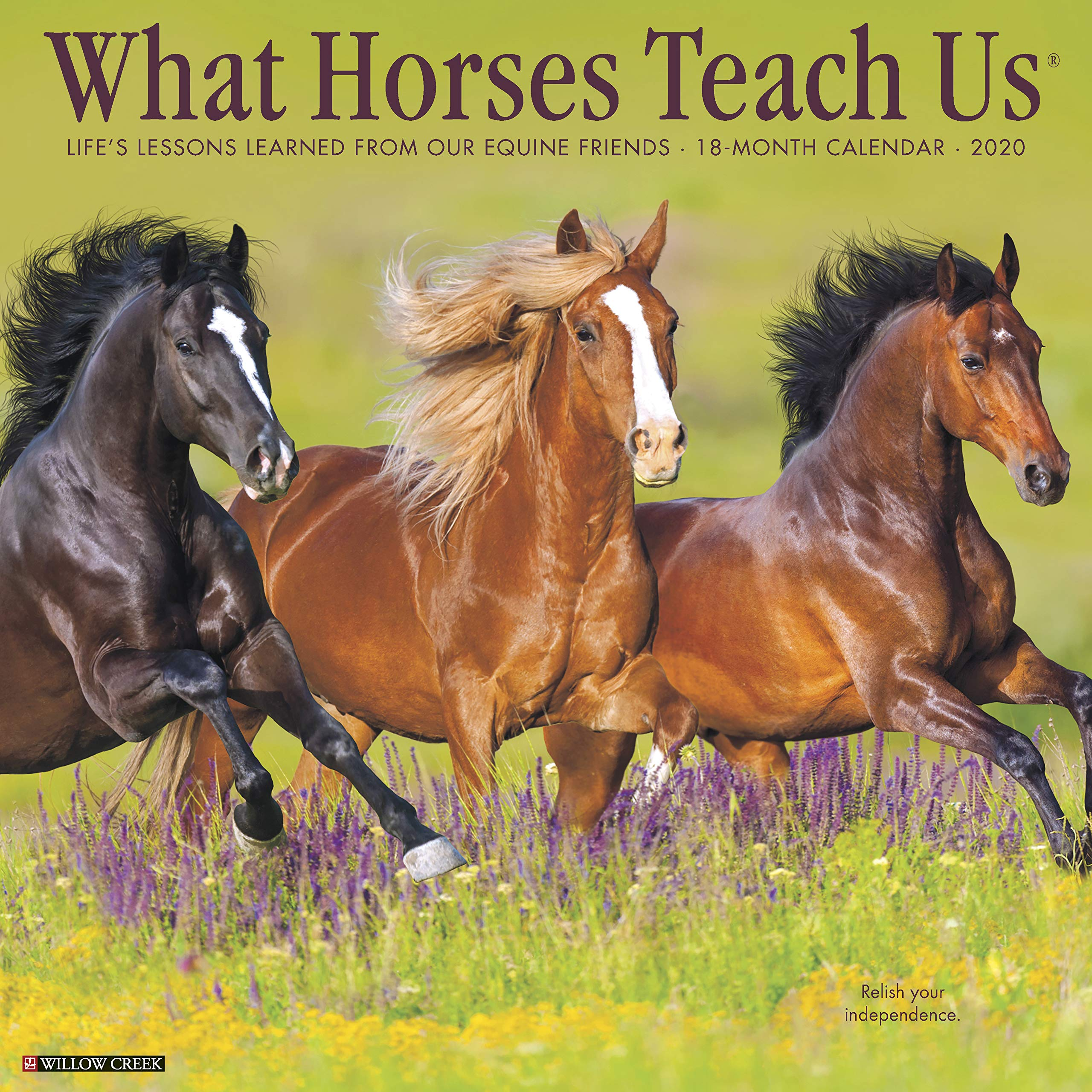 Horse Calendar 2020 What Horses Teach Us 2020 Wall Calendar: Willow Creek Press
