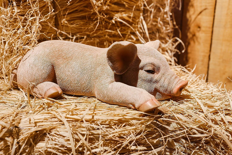 Hi- Line Gift 87686-A Pig Sleeping Statue