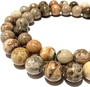 [ABCgems] Indonesian Petoskey Fossil Coral (Gorgeous Star Matrix by Mother Nature- Prime Cut from Center of Stone)16mm Smooth Round Beads for Jewelry Making