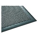 Guardian 14040600 Clean Step Scraper Outdoor