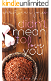 Didn't Mean To Love You (Serendipitous Love Book 2)