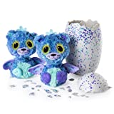 Hatchimals Surprise - Peacat - Hatching Egg with