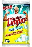 Maestro Limpio Multiusos Detergente En Polvo 5 kg