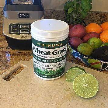 Amazon.com: Dinuwa Superfood – Increíble mezcla 80/20 de ...