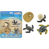 Safari Ltd Life Cycle of a Green Sea Turtle by Safari Ltd