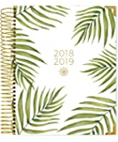 """Bloom Daily Planners 2018-2019 Academic Year Hard Cover Vision Planner - Monthly and Weekly Column View Day Planner - (August 2018 - July 2019) - 7.5"""" x 9"""" - Palm Leaves"""