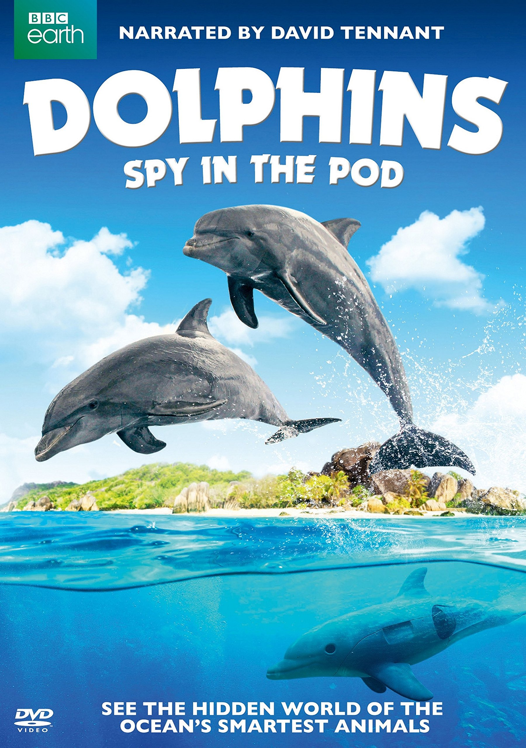 DVD : Dolphins: Spy In The Pod (Eco Amaray Case)