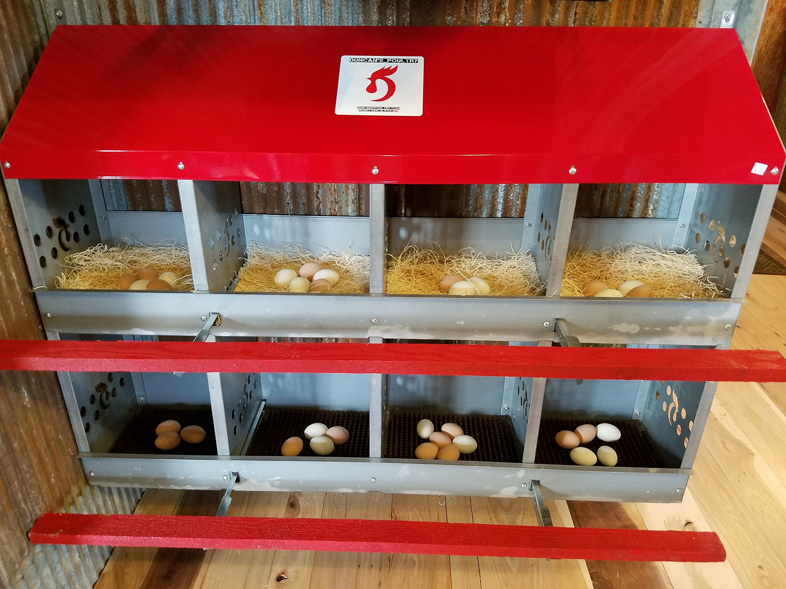 Duncan's Poultry 8 Hole Hen Nest by Duncan's Poultry