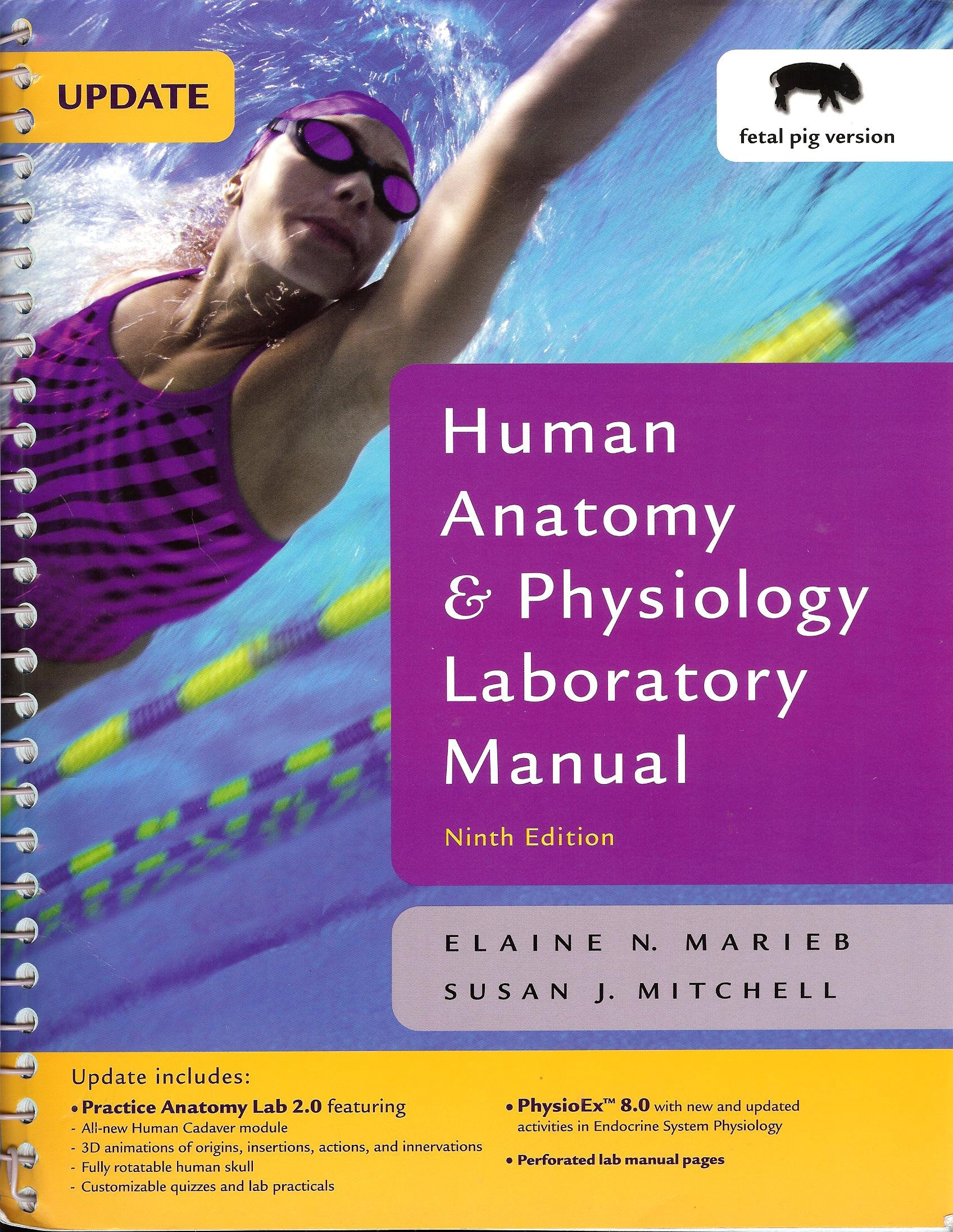 Human Anatomy & Physiology Laboratory Manual, Fetal Pig Version, Update:  Elaine Nicpon Marieb, Susan J. Mitchell: 9780321542465: Physiology: Amazon  Canada