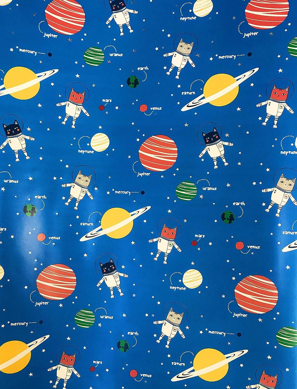 Amazon.com: Lindo espacio exterior astronauta gatos y ...