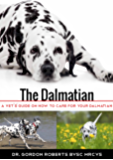 The Dalmatian: A vet's guide on how to care for your Dalmatian