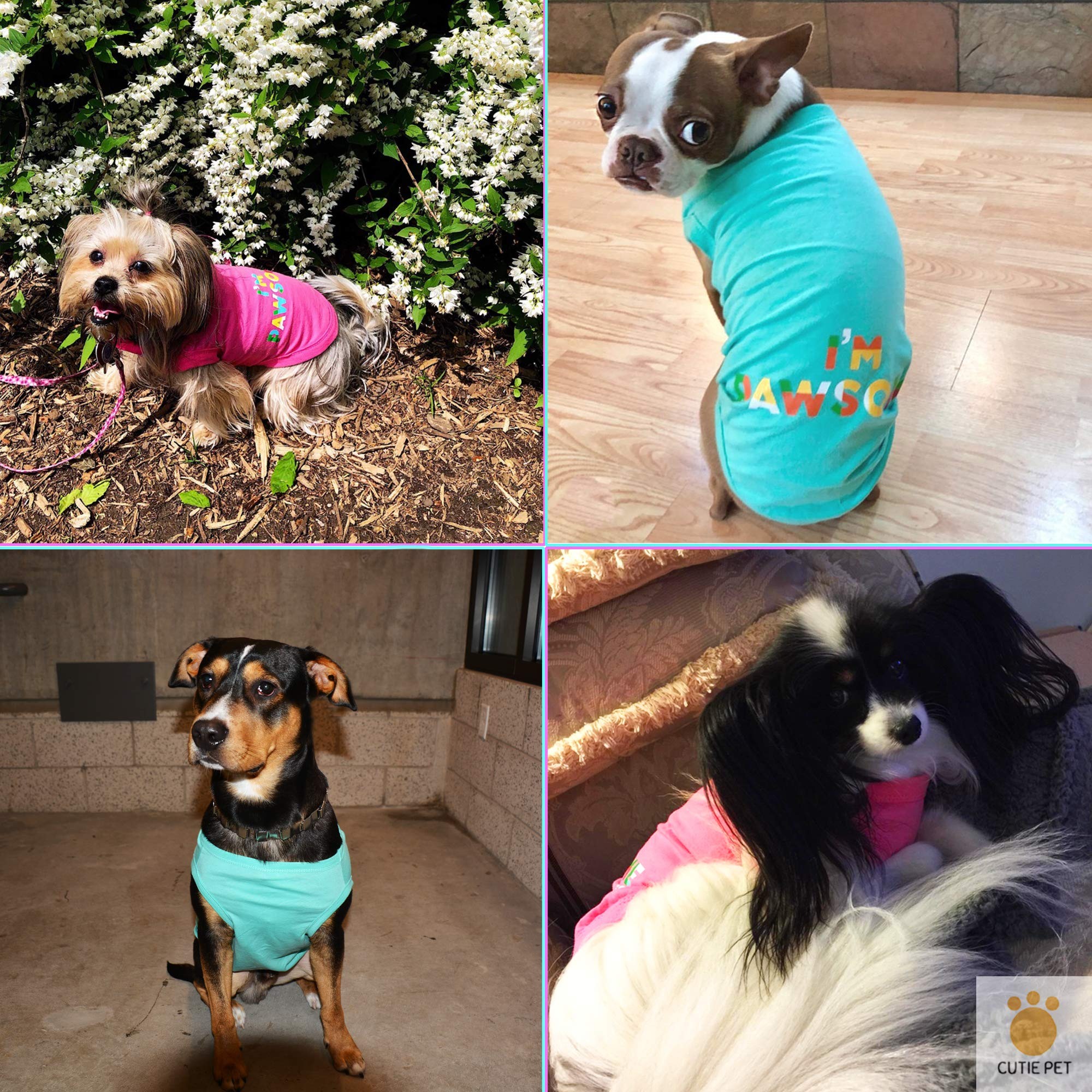 Cutie Pet Dog Clothes Dog Shirts I\'m Pawsome 100% Cotton Comfortable and Breathable for Small Medium Large Pets