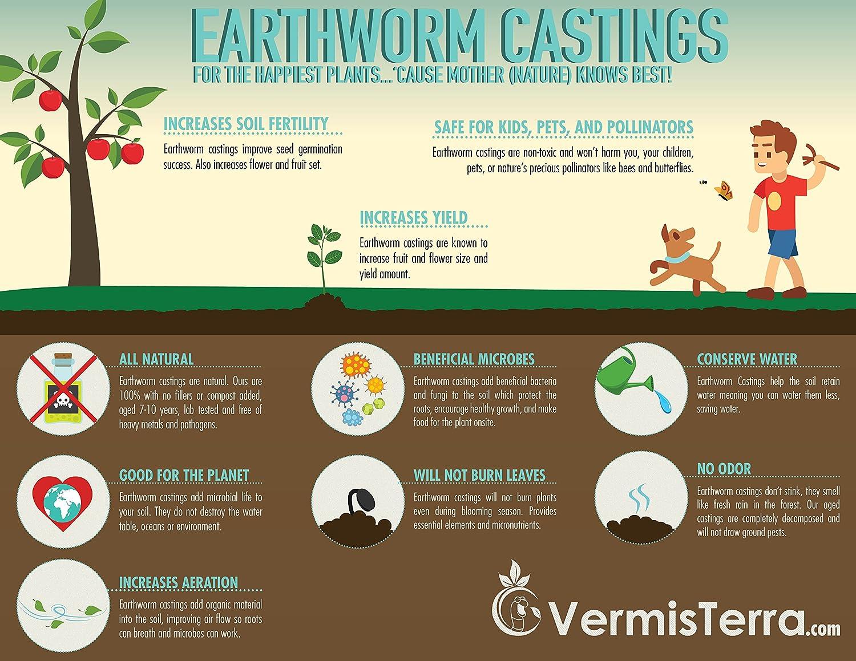 Amazon.com : VermisTerra - Premium Earthworm Castings - Organic 10 ...