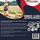Doggy Dear Retractable Hands Free Dual Bungee Dog