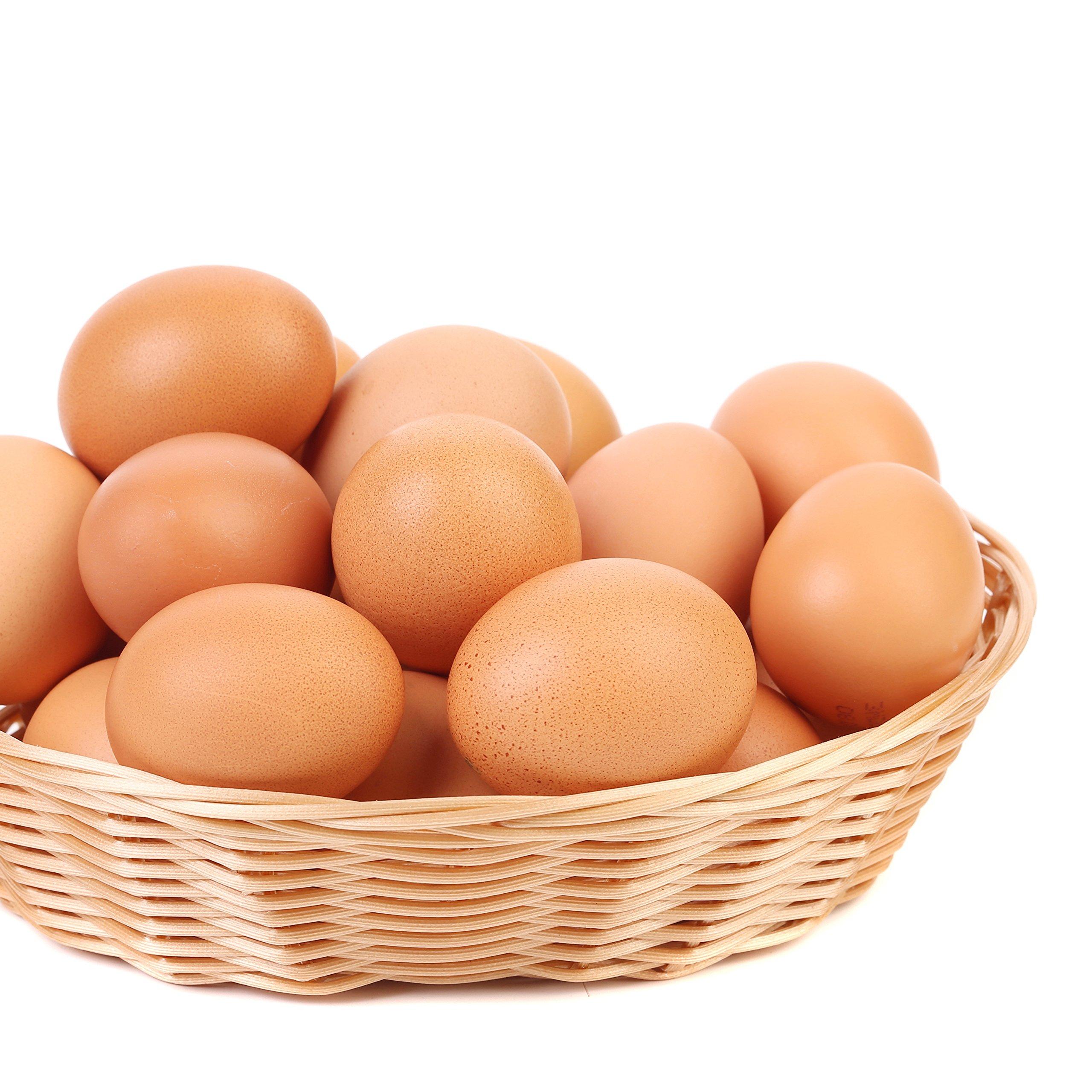 Augason Farms Dried Whole Egg Product 2 lbs 1 oz No. 10 Can by Augason Farms (Image #7)