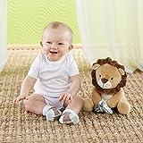 Baby Aspen Ryan the Lion Plus Plush