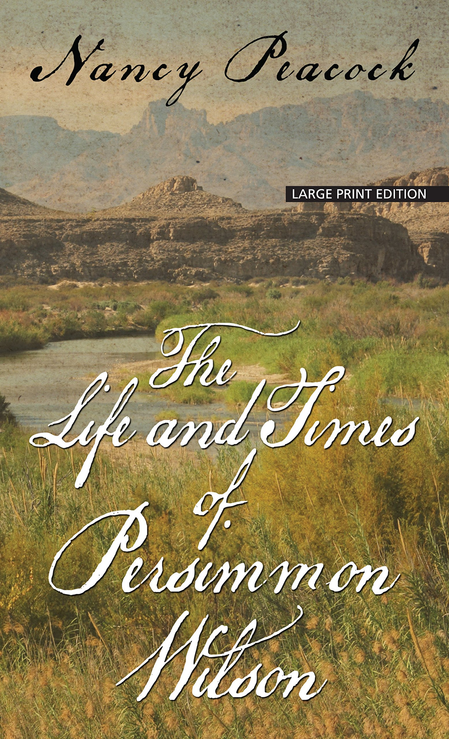 The Life and Times of Persimmon Wilson (Thorndike Press large print basic) ebook