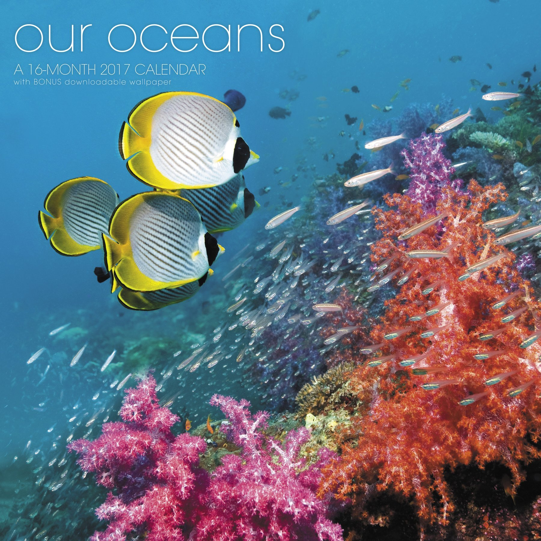 Our Oceans Wall Calendar Landmark