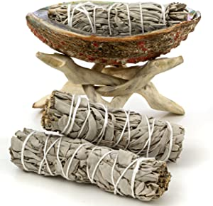 5 Inches (or More) Premium Abalone Shell with Natural Wooden Tripod Stand and 3 California White Sage Smudge Sticks for Incense Burning, Home Fragrance, Energy Clearing, Yoga, Meditation