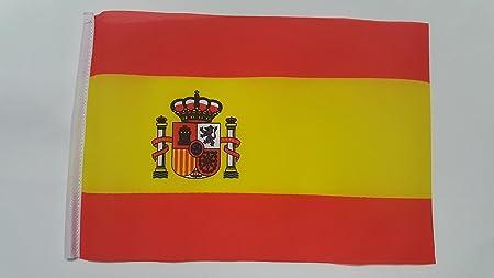 Mini España Bandera del Estado - (22,86 cm x 15,24 cm): Amazon.es: Hogar