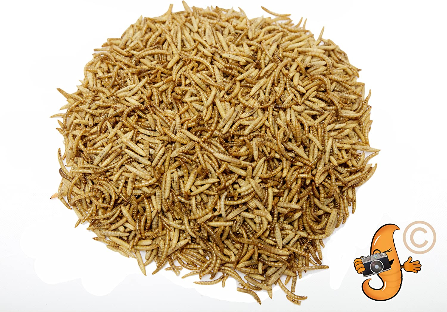 1lb Chubby Mix (Mealworm & Black Soldier Fly Larvae Combo) for Wild Birds, Chickens etc.
