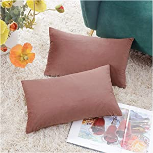 COMFORTLAND 2 Pack Decorative Throw Pillow Covers, Lumbar Soft Luxury Velvet Cushion Sham, 12x20 Solid Pillowcase Set for Sofa Couch Bed Chair Car Home Decor, Dusty Rose Pink