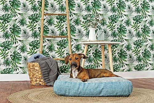 Eco Friendly Cama para perro 100% algodón orgánico: Amazon ...