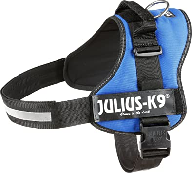 Julius-K9, Talla 3, 82-118 cm, Azul: Amazon.es: Productos para ...