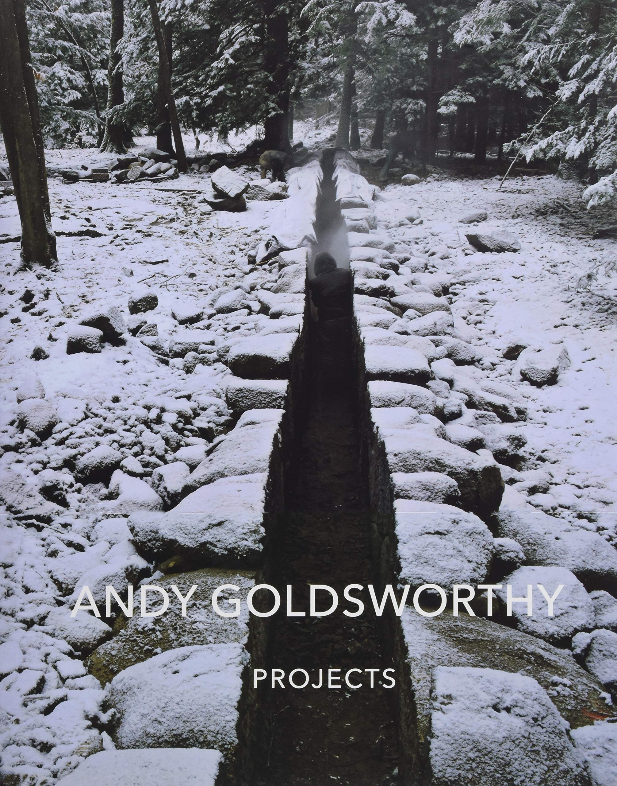Andy Goldsworthy: Projects by Harry N. Abrams