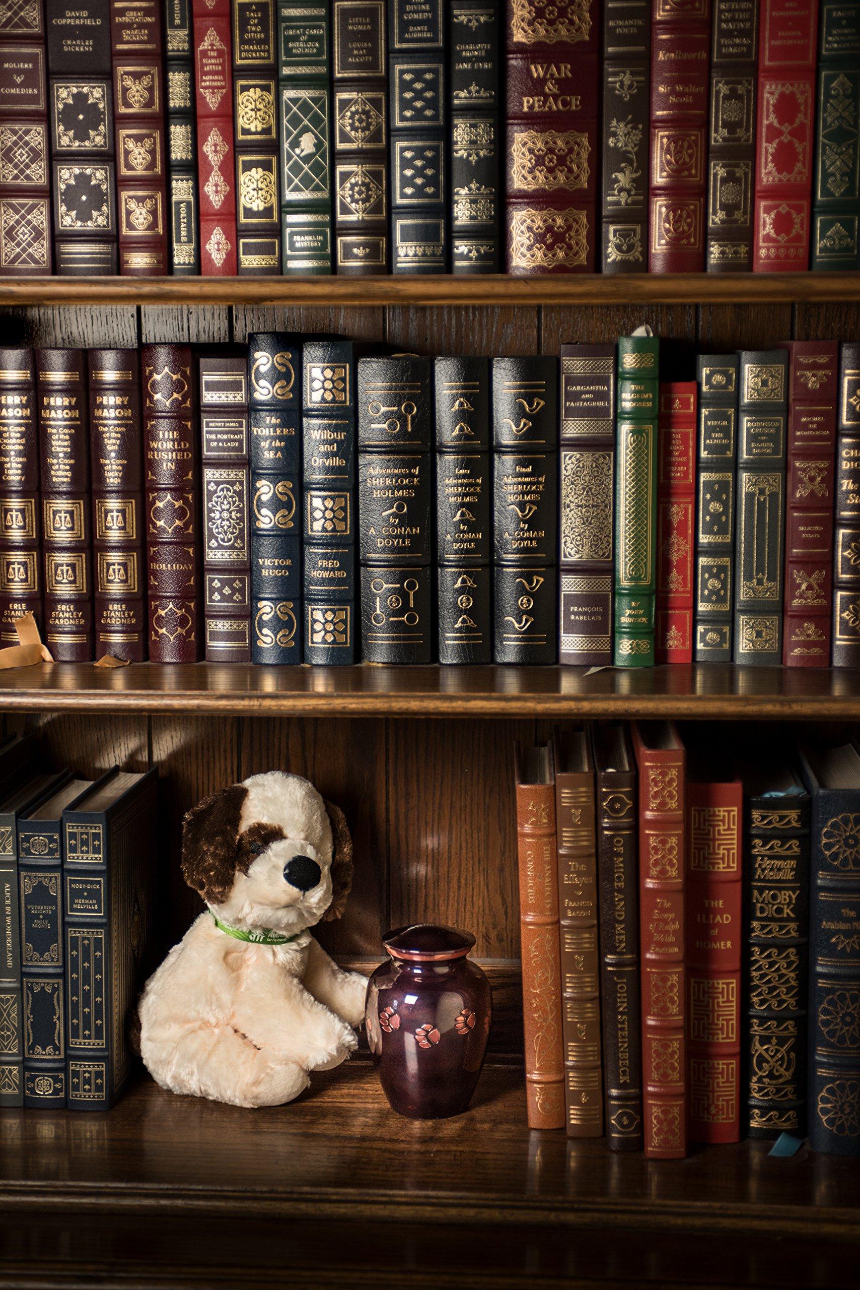 Pet Passages - ''Beloved Companion - Amethyst (X-Large) by Pet Passages (Image #6)