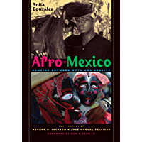 Afro-Mexico: Dancing Between Myth and Reality book cover