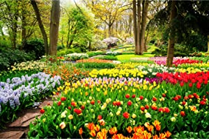 Spring Landscape Garden Jigsaw Puzzles 1000 Pieces  Board Game 1000 Piece Puzzles for Adults   Family Entertainment Night Adult Puzzles   Quarantine Games 1000 Piece Puzzles for Adults