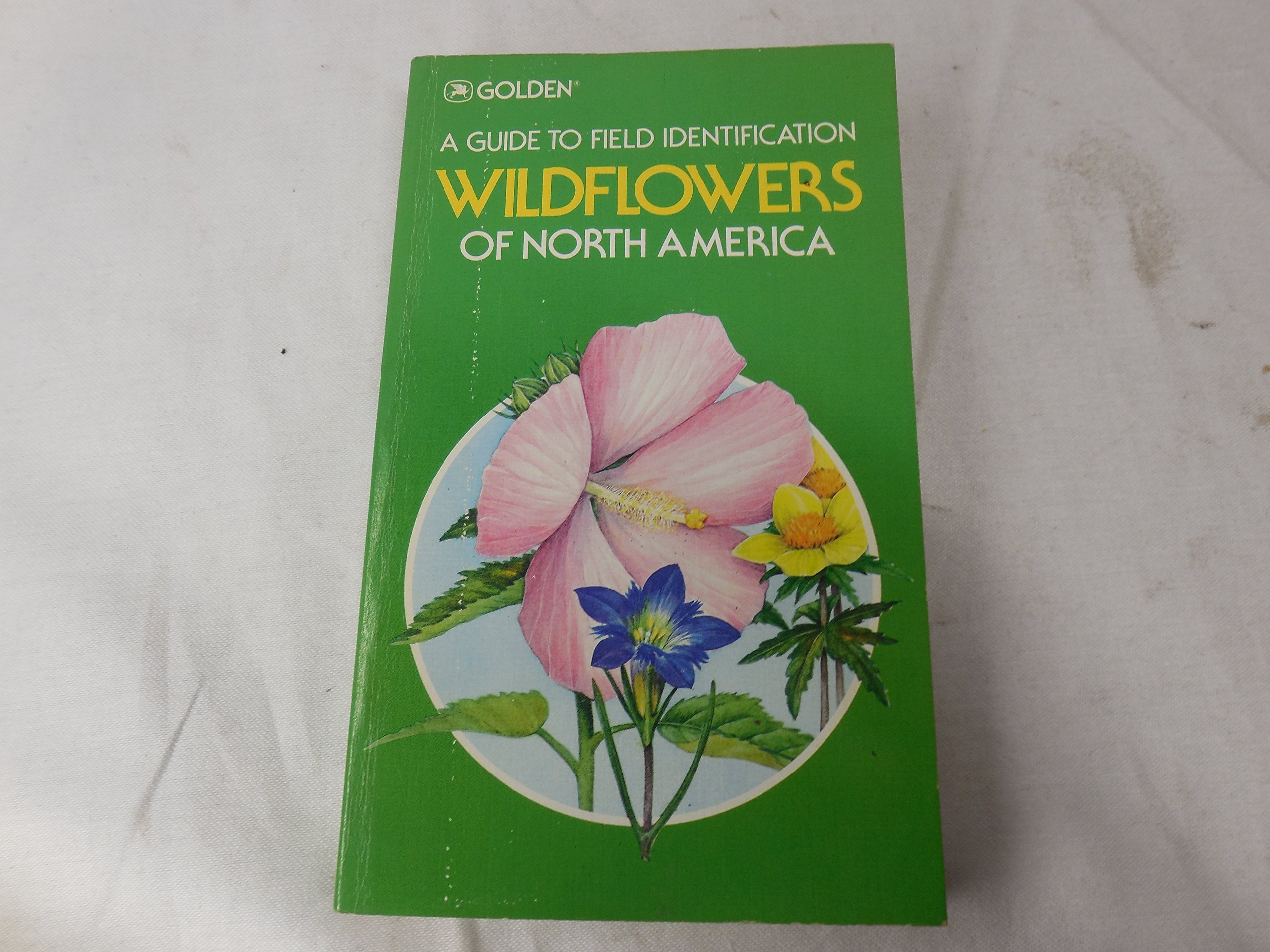 A Guide To Identification Wild Flowers North America