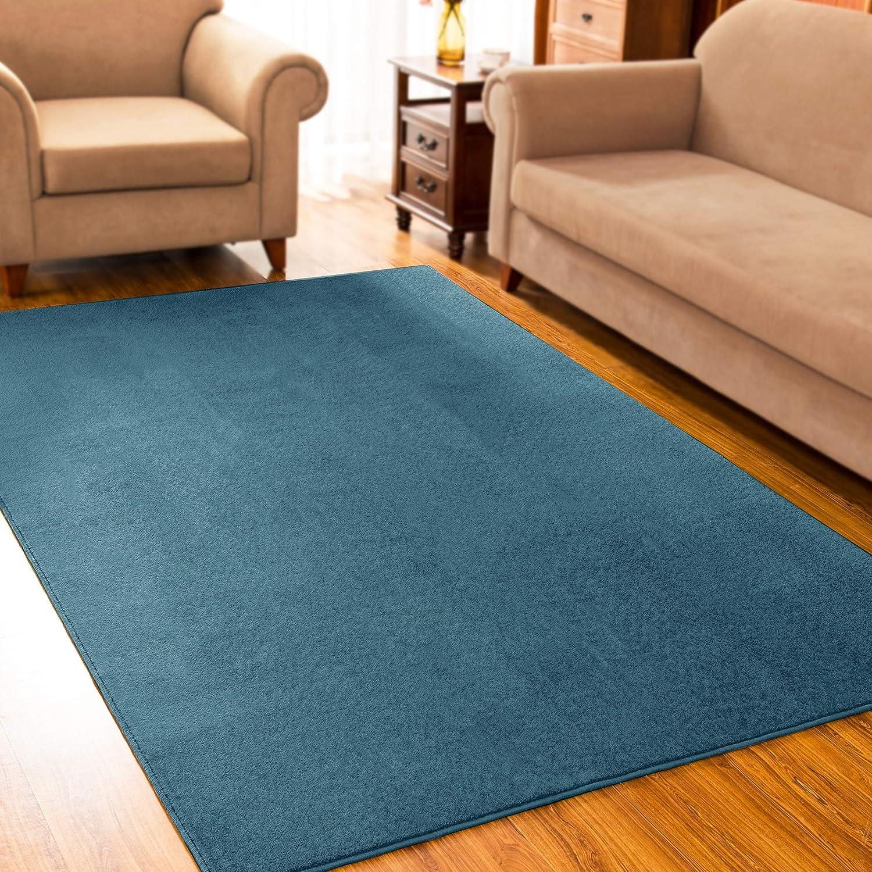 subrtex Short Plush Solid Area Rug for Living Room Modern Black Home Rug Soft Black Indoor Carpet for Bedroom Kids Room (3'× 5', Blue)