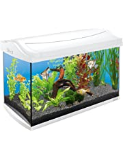 Tetra AquaArt Kit de acuario completo Discover Line, 60L 60 L white