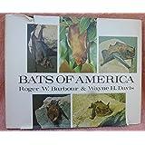 Bats of America