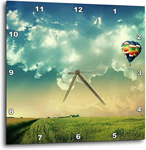 3dRose DPP_66307_1 Hot Air Balloon Scene, Blue Sky, Green Grass-Wall Clock, 10 by 10-Inch