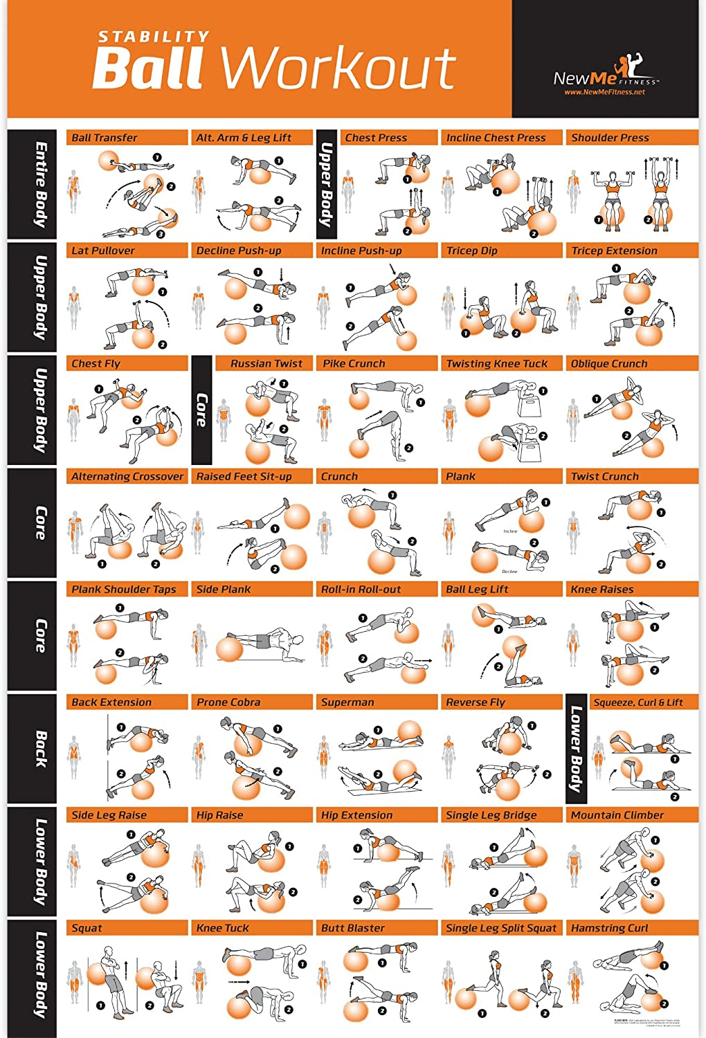 Exercise Ball Poster Laminated - Total Body Workout - Personal Trainer Fitness Program - Swiss, Yoga, Balance & Stability Ball Home Gym Poster - Tone Your Core, Abs, Legs Gluts & Upper Body