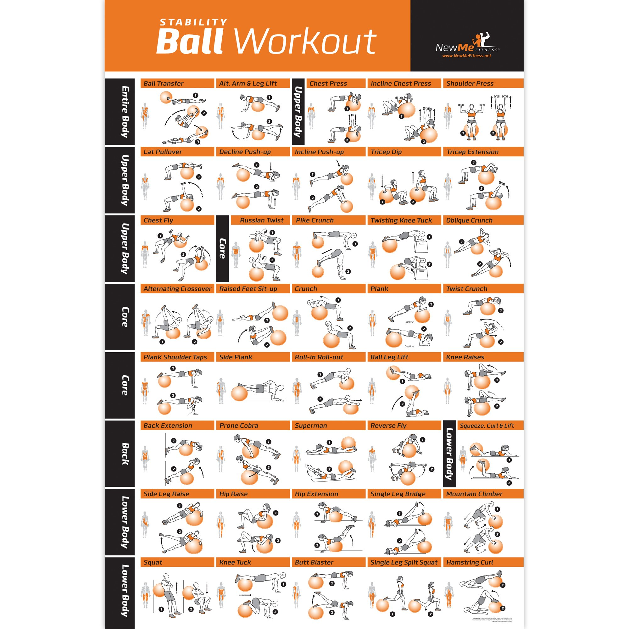 Exercise Ball Poster Laminated - Total Body Workout - Personal Trainer Fitness Program - Swiss, Yoga, Balance & Stability Ball Home Gym Poster - Tone Your Core, Abs, Legs Gluts & Upper Body - 20''x30''