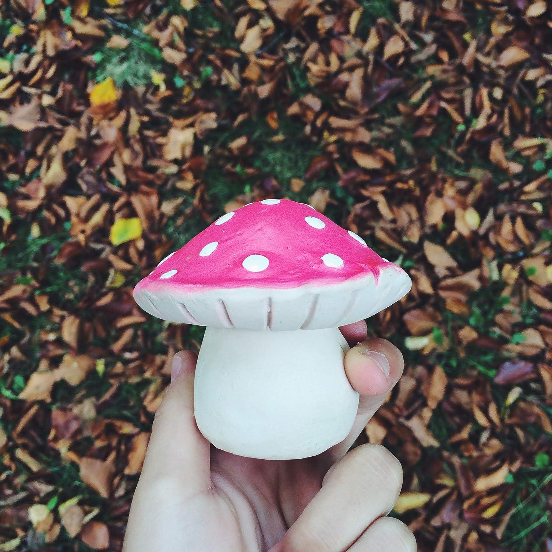 Amazon.com: Oli & Carol Forest Red Mushroom, Red: Baby
